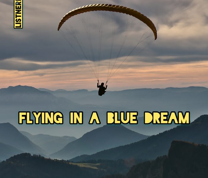 Flying in a Blue Dream (Piano & Guitar Instrumental Music) UPDATE 03-17-2019